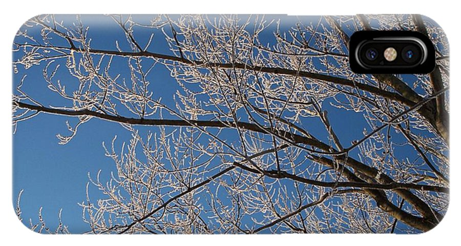 Branches IPhone X / XS Case featuring the photograph Ice Storm Branches by Michelle Miron-Rebbe