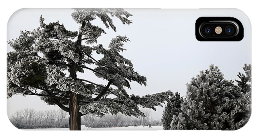 Tree IPhone X Case featuring the photograph Ice Storm Scenery by Sophie Vigneault