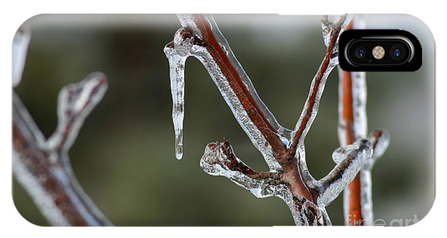 Ice IPhone X Case featuring the photograph Icy Branch-7463 by Gary Gingrich Galleries