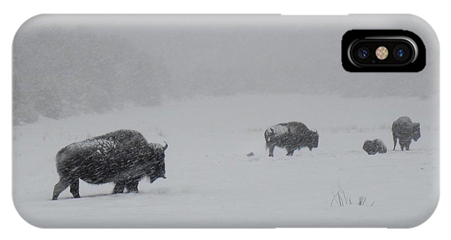 Impervious IPhone X Case featuring the photograph Impervious by Annie Adkins
