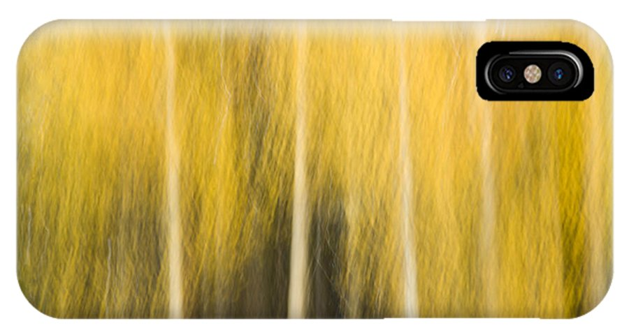 Aspen IPhone X Case featuring the photograph Impressions Of Golden Aspen by Nancy Myer