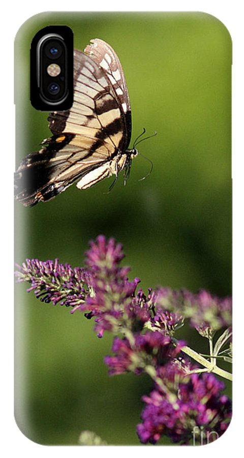 IPhone X Case featuring the photograph In Flight by Douglas Stucky
