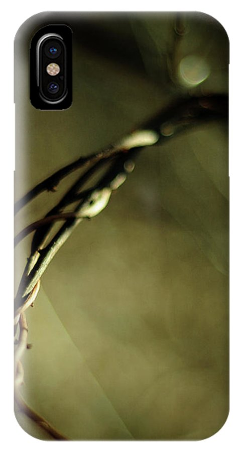Vines IPhone X Case featuring the photograph In Shadows And Light by Rebecca Sherman