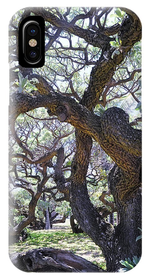 Tree IPhone X Case featuring the photograph In The Depth Of Enchanting Forest II by Jenny Rainbow