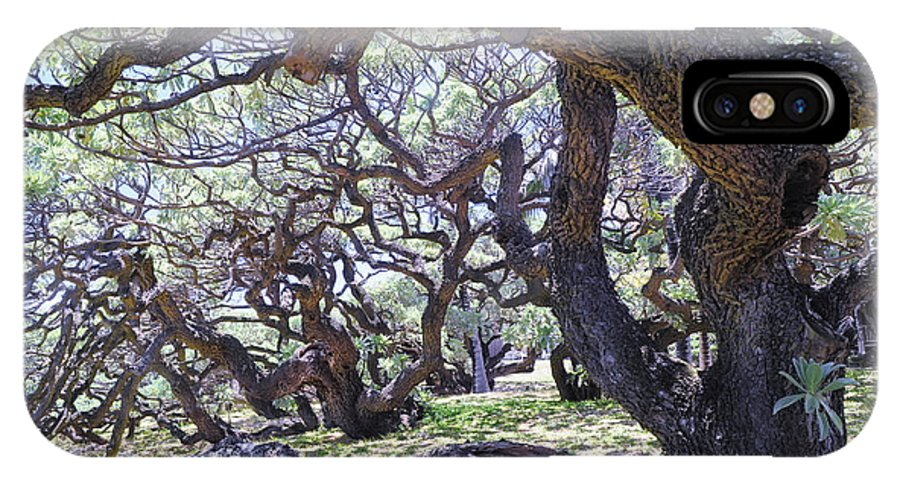Tree IPhone X Case featuring the photograph In The Depth Of Enchanting Forest by Jenny Rainbow