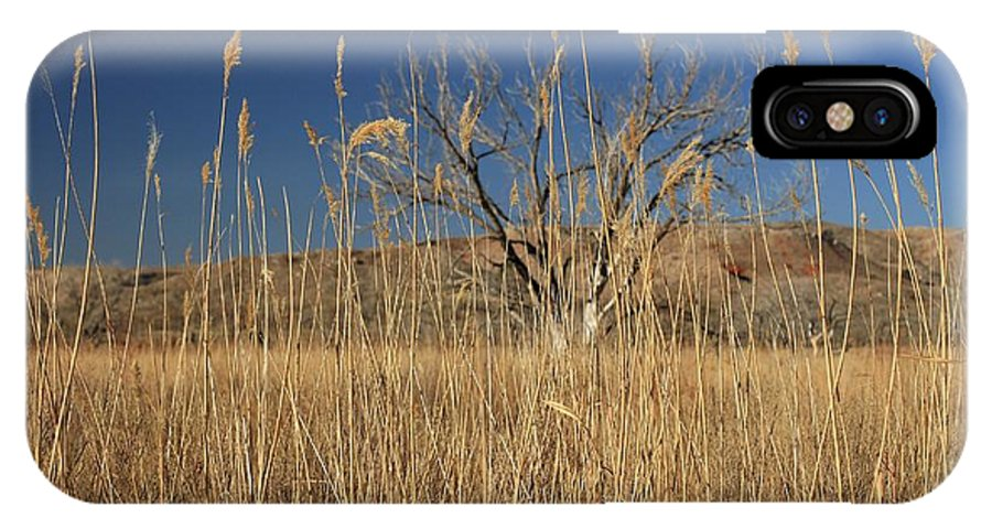 Texas IPhone X Case featuring the photograph In The Grass by Ashley M Conger