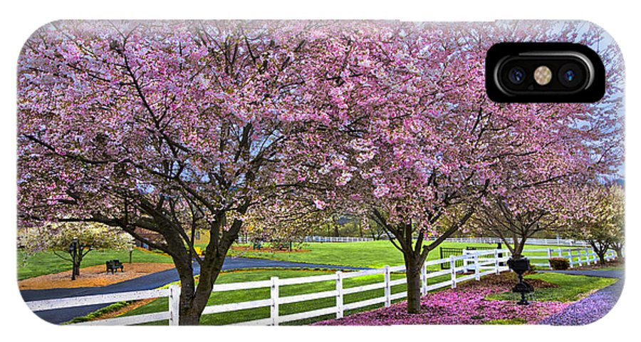Andrews IPhone X Case featuring the photograph In The Pink by Debra and Dave Vanderlaan