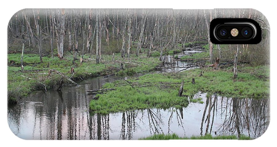Wetlands IPhone X Case featuring the photograph In The Woods by John Ricard jr