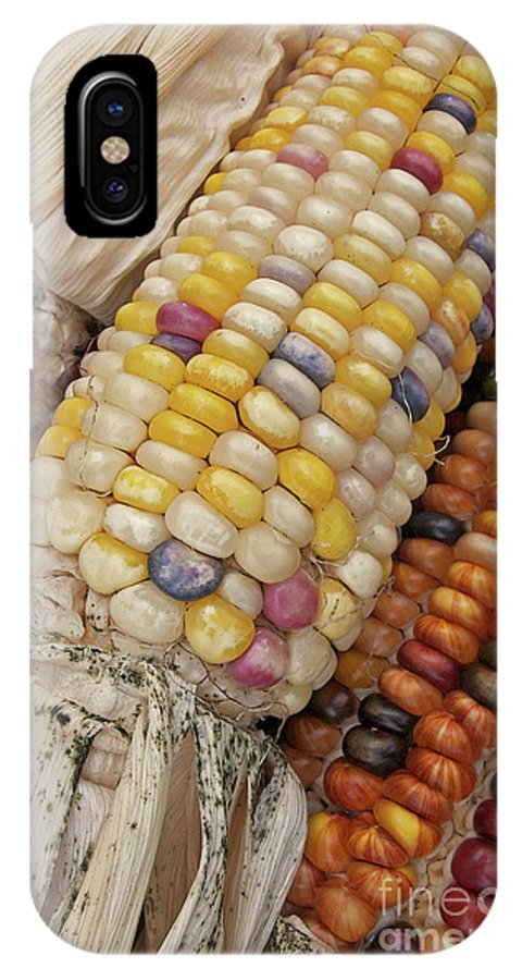 Indian Corn IPhone X Case featuring the photograph Indian Corn by Ann Horn