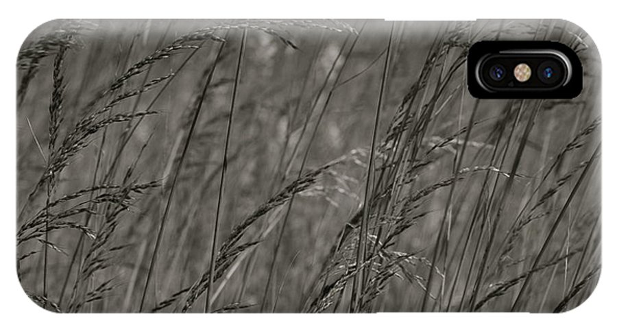 Photography By Tiwago IPhone X Case featuring the photograph Indian Grass In The Wind by Photography by Tiwago