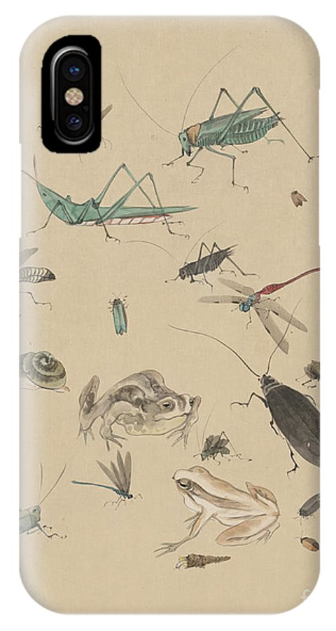 1825 IPhone X Case featuring the photograph Insects C1825 by Granger