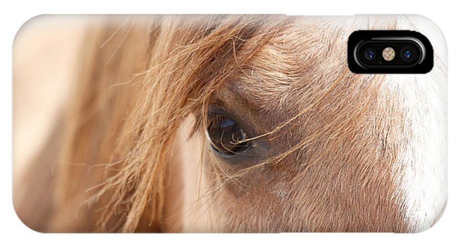 Horses IPhone X Case featuring the photograph Into My Soul by Athena Mckinzie