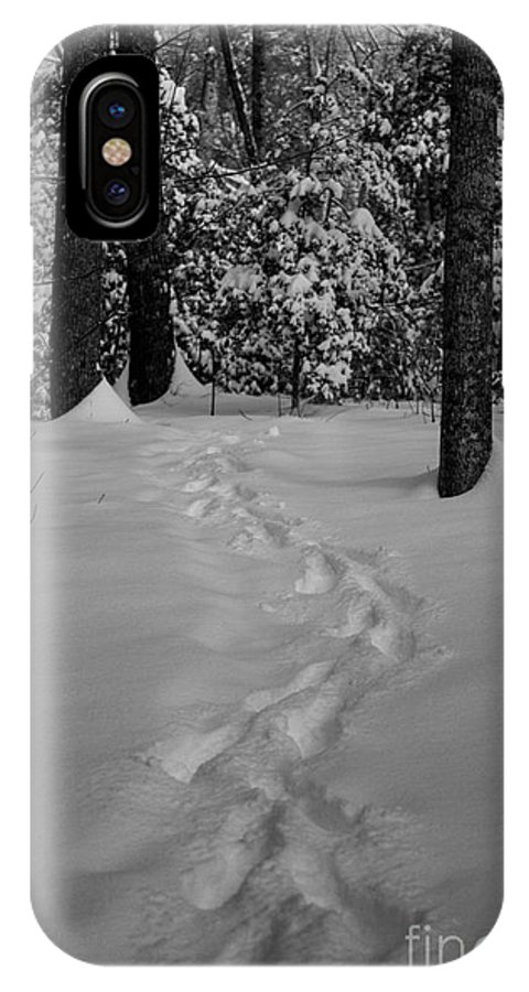Black And White IPhone X Case featuring the photograph Into The Woods Pisgah Forest Black And White by Donnie Whitaker