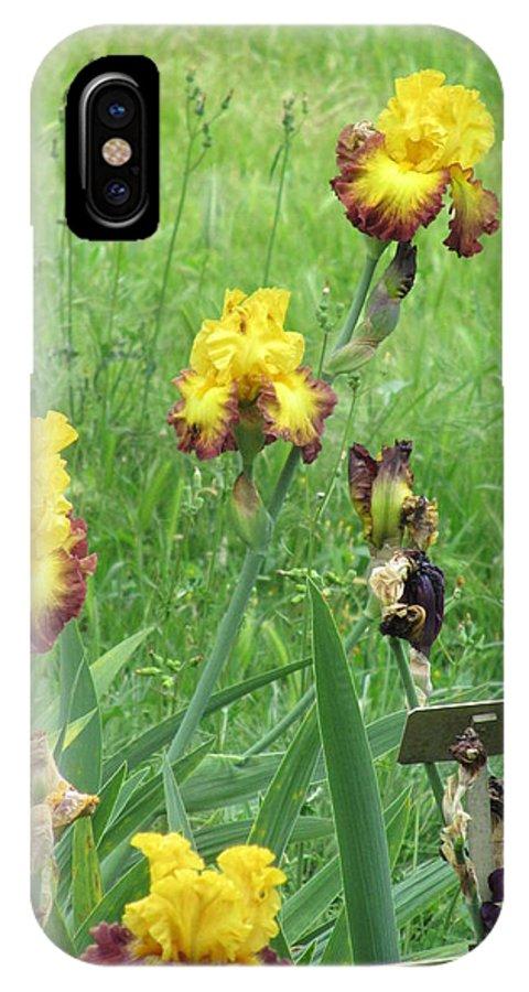Iris IPhone X Case featuring the photograph Iris Dancers by Iris Prints