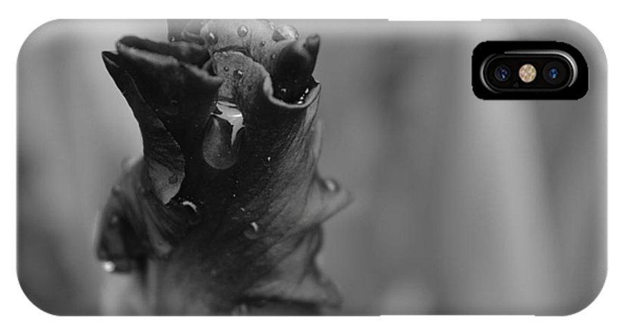 Michael Cummings IPhone X / XS Case featuring the photograph Iris Flower by Michael Cummings
