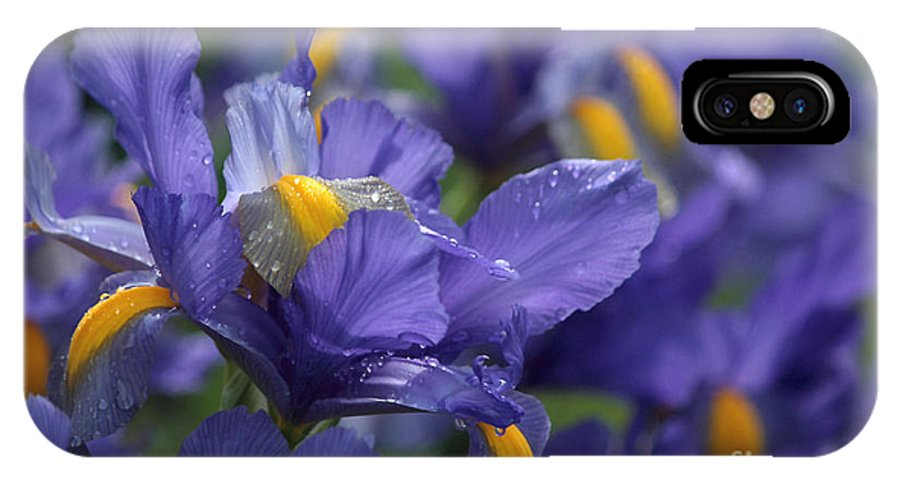 Blue Flowers IPhone X Case featuring the photograph Iris With Raindrops by Luv Photography