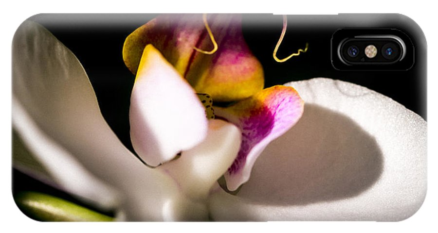 White-pink Orchid IPhone X Case featuring the photograph Island Dream by Sheree Lauth