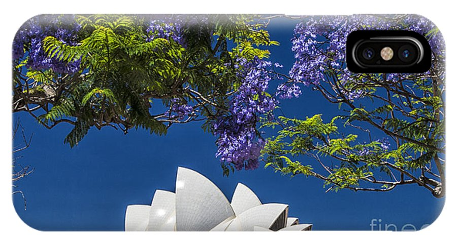 Sydney Opera House IPhone X Case featuring the photograph Jacaranda spring by Sheila Smart Fine Art Photography