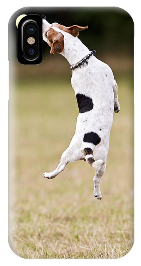 Jack Russell IPhone X / XS Case featuring the photograph Jack Russell Jumping For Ball by Brian Bevan