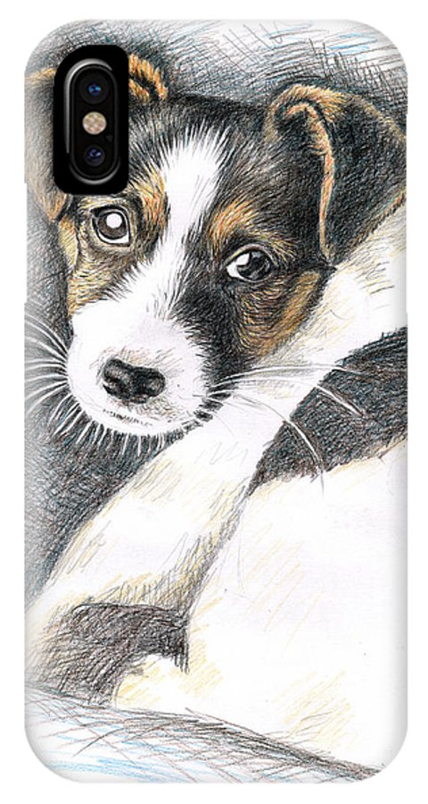 Dog IPhone X Case featuring the drawing Jack Russell Puppy by Nicole Zeug