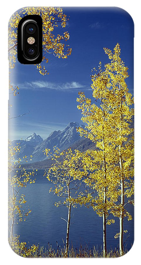 Jackson Lake IPhone X / XS Case featuring the photograph 1m9206-jackson Lake And Aspens, Wy by Ed Cooper Photography