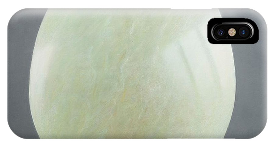Jade IPhone X Case featuring the photograph Jade Egg, 2012 Acrylic On Canvas by Lincoln Seligman