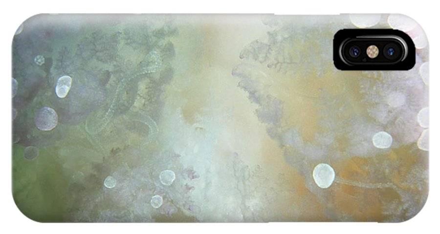 Micronesia IPhone X Case featuring the photograph Jellyfish 2 by Dawn Eshelman