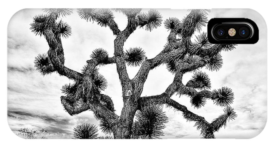 Joshua Tree IPhone X / XS Case featuring the photograph Joshua Black And White by Benjamin Yeager