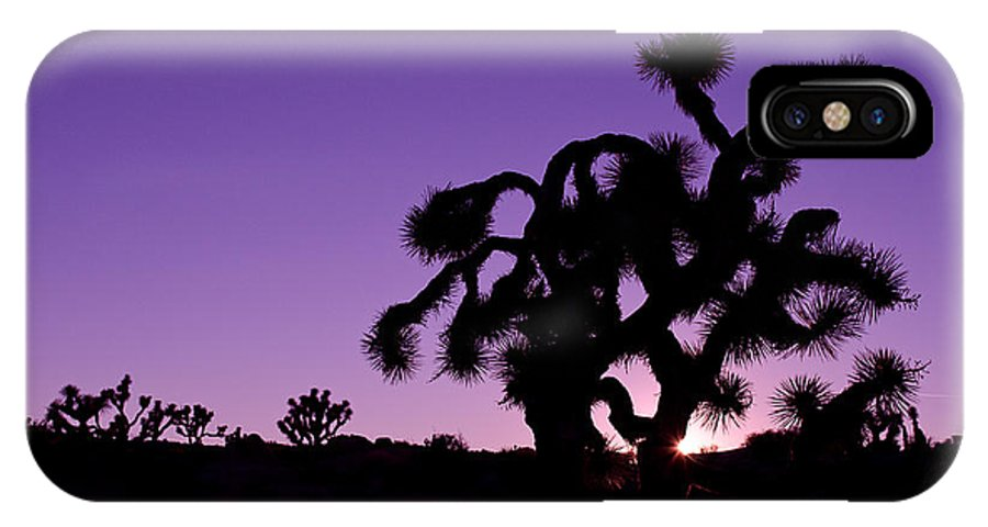 Joshua Trees IPhone X Case featuring the photograph Joshua Trees by Tiffany Rantanen