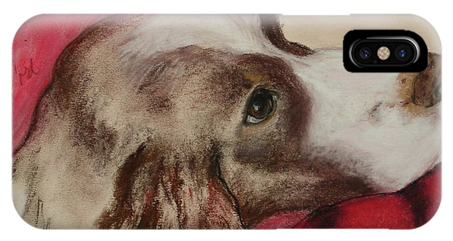 Springer Spaniel IPhone X Case featuring the drawing Jourdan by Cori Solomon