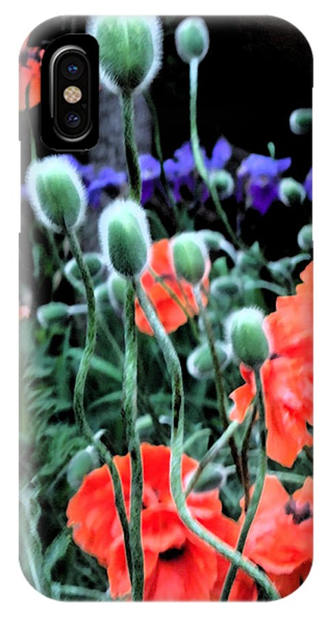 Flowers IPhone X Case featuring the photograph Julia's Garden II by Lanita Williams
