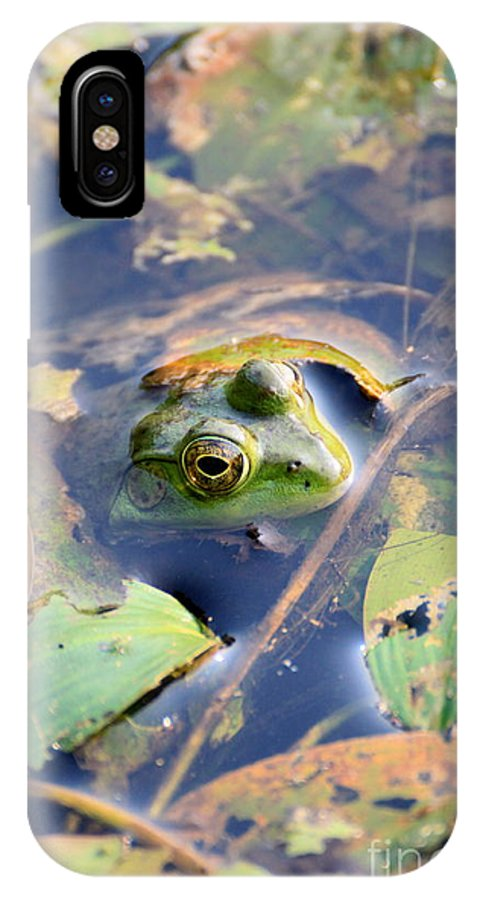 Frog IPhone X Case featuring the photograph Just Hanging Around by Rick Rauzi