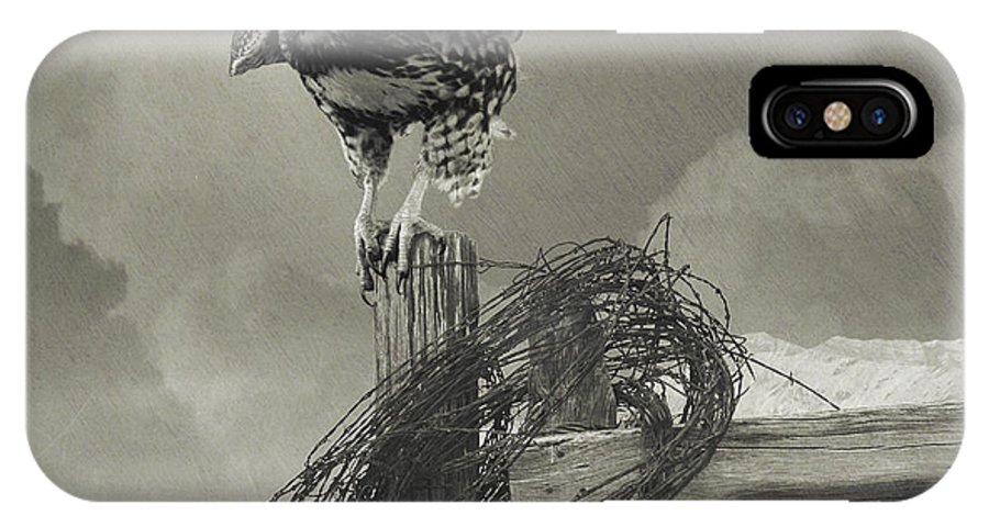 Hawk IPhone X Case featuring the painting Juvenile Redtail On Post With Barbed Wire by R christopher Vest