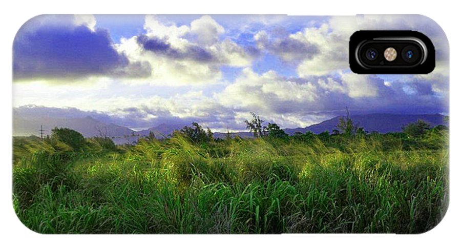 Landscape IPhone X Case featuring the photograph Kauai Grass by Catherine Rogers
