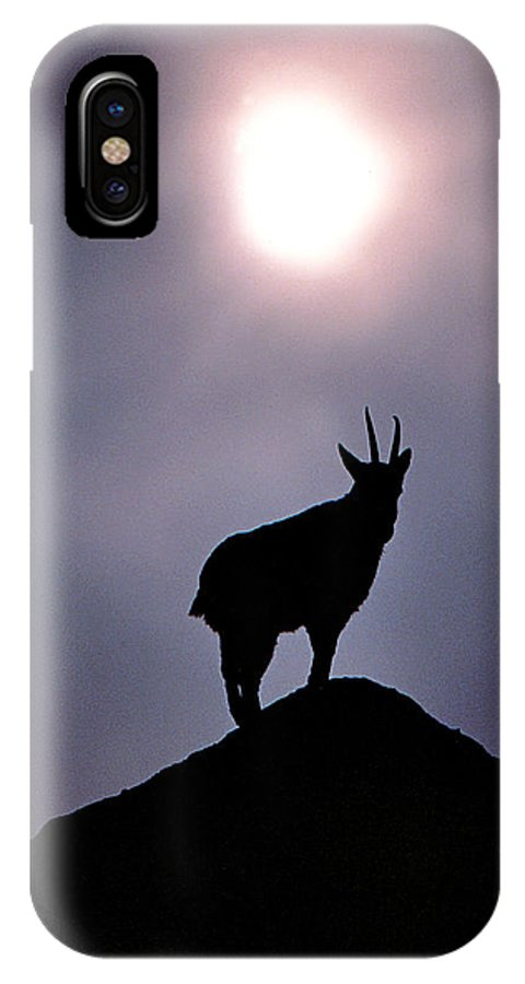 Mountain Goat IPhone X Case featuring the photograph King Of The Hill by Christopher McKenzie