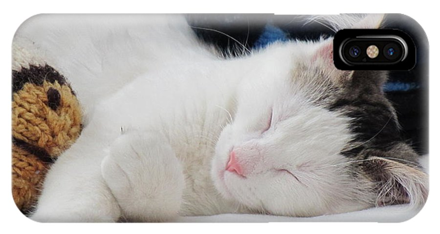 Kitten IPhone X Case featuring the photograph Kitten And Friend Finally At Rest by Lai S Smith