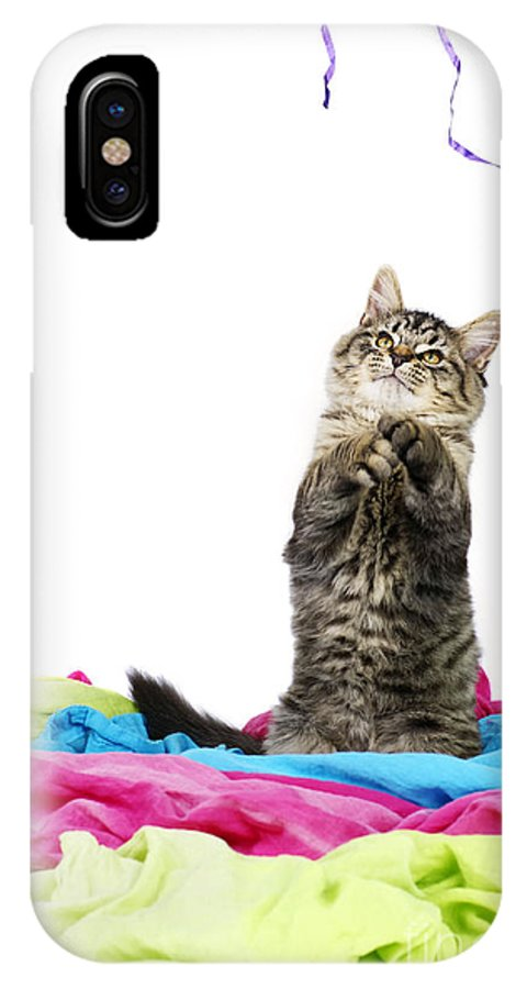 Cat IPhone X Case featuring the photograph Kitten Playing With String by Sylvie Bouchard