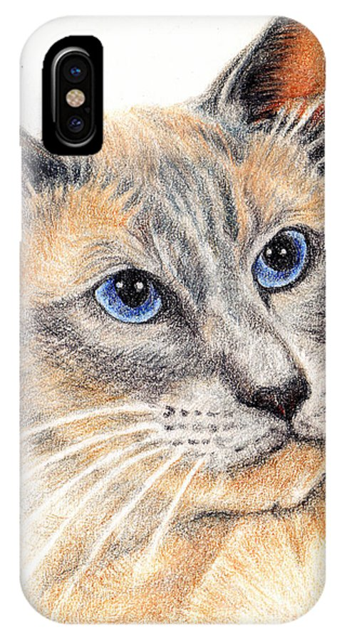Cats IPhone X Case featuring the painting Kitty Kat Iphone Cases Smart Phones Cells And Mobile Cases Carole Spandau Cbs Art 346 by Carole Spandau