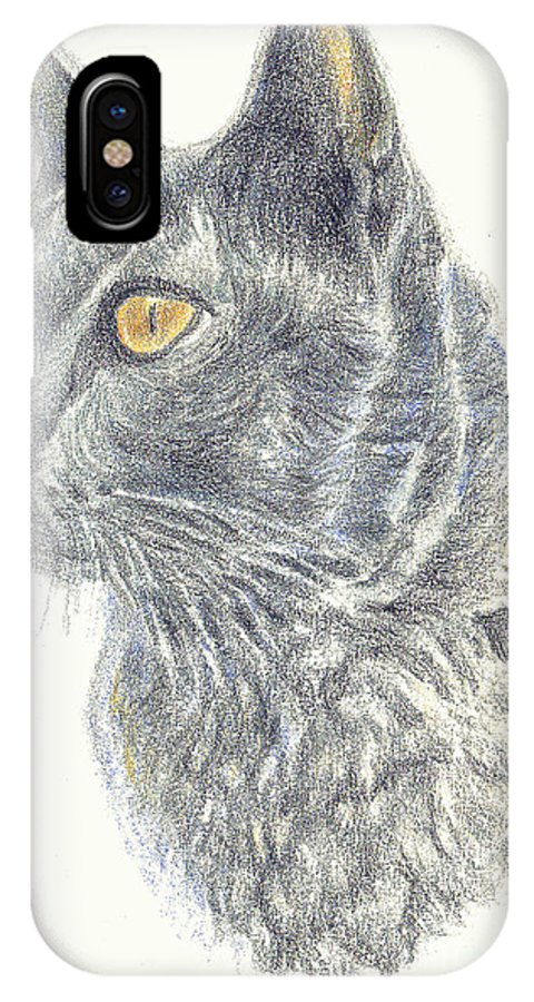 Cats IPhone X Case featuring the painting Kitty Kat Iphone Cases Smart Phones Cells And Mobile Cases Carole Spandau Cbs Art 347 by Carole Spandau
