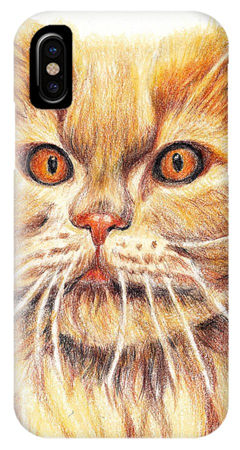 Cats IPhone X Case featuring the painting Kitty Kat Iphone Cases Smart Phones Cells And Mobile Cases Carole Spandau Cbs Art 351 by Carole Spandau