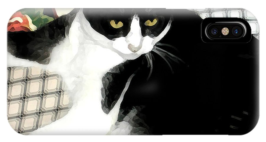 Black And White IPhone X Case featuring the photograph Kitty On His Perch by Jeanne A Martin