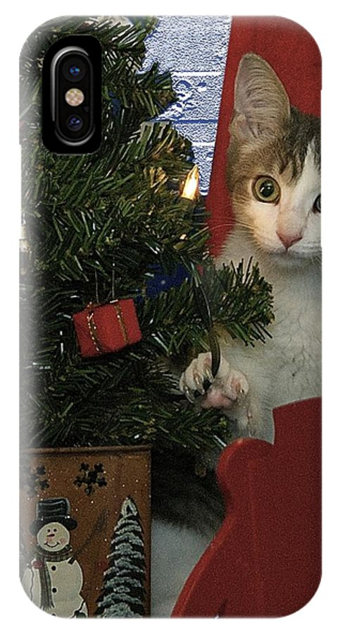 Animals IPhone X Case featuring the photograph Kitty Says Happy Holidays by Thomas Woolworth