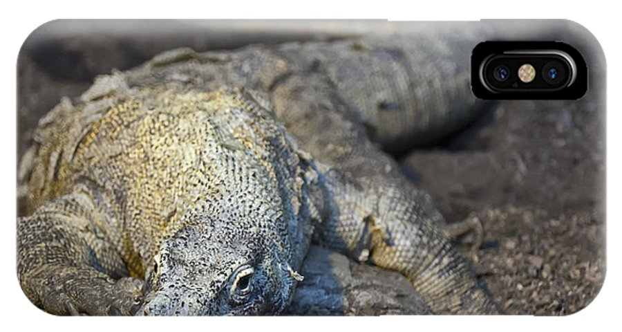 Wildlife IPhone X Case featuring the photograph Komodo Dragon by Jason Abston