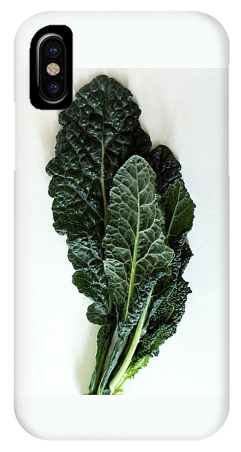 Food IPhone X Case featuring the photograph Lacinato Kale by Romulo Yanes