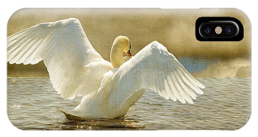 Swans IPhone X Case featuring the photograph Lady-in-waiting by Lois Bryan