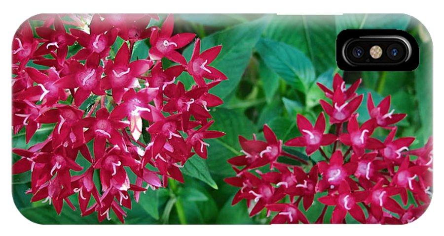 Hawaii IPhone X Case featuring the photograph Lahaina Flowers 1 by Dawn Eshelman