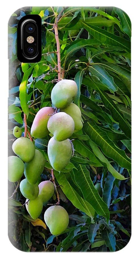 Hawaii IPhone X Case featuring the photograph Lahaina Mango 1 by Dawn Eshelman