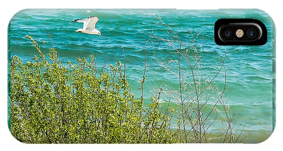 Lake Michigan Seagull In Flight IPhone X Case featuring the photograph Lake Michigan Seagull In Flight by LeeAnn McLaneGoetz McLaneGoetzStudioLLCcom