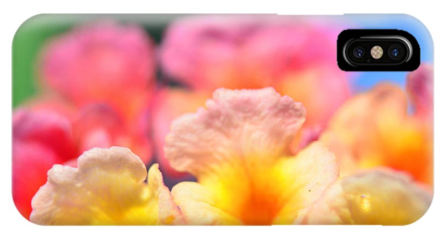 Nature IPhone X Case featuring the photograph Lantana Macro II by Debbie Portwood