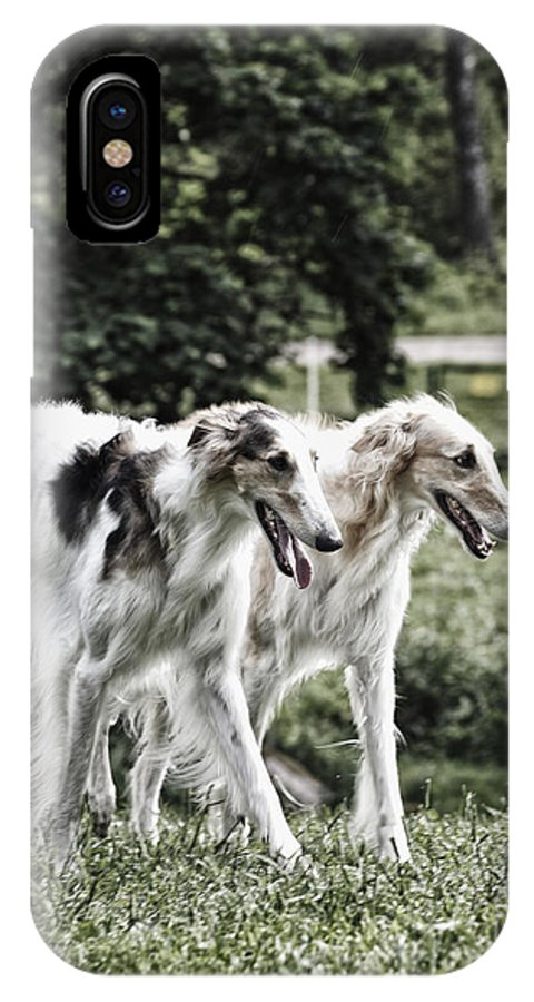 Dogs IPhone X Case featuring the photograph Large Dogs On The Prowl by Christian Lagereek